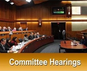 Committee Hearings