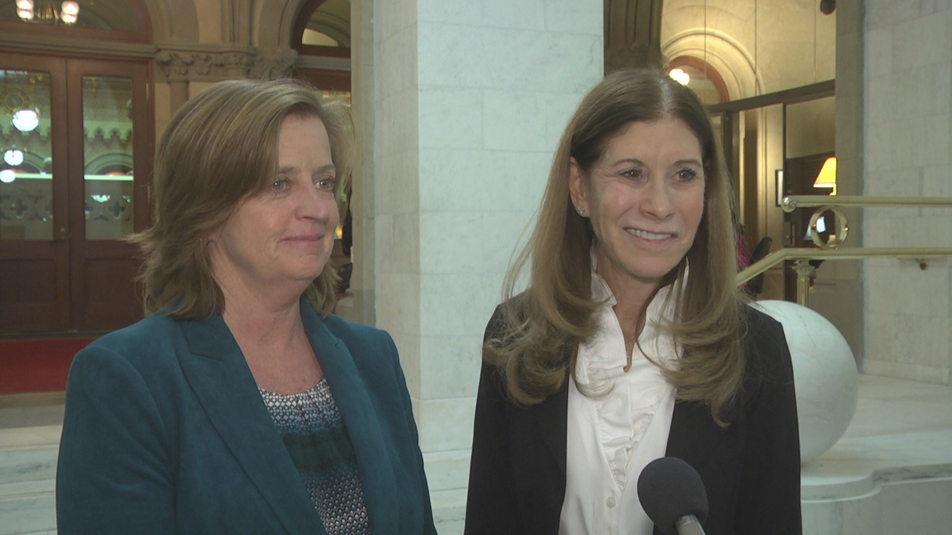 Linda Beigal Schulman Joins Assemblywoman Griffin In Fight Against Gun Violence