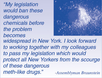 Assemblyman Edward C  Braunstein Reports to the People