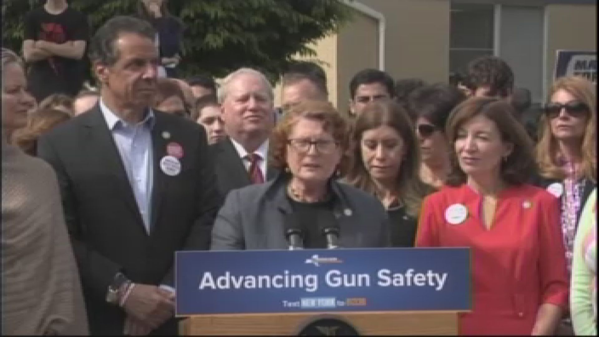 Assemblymember Simon Fights for Gun Safety Legislation