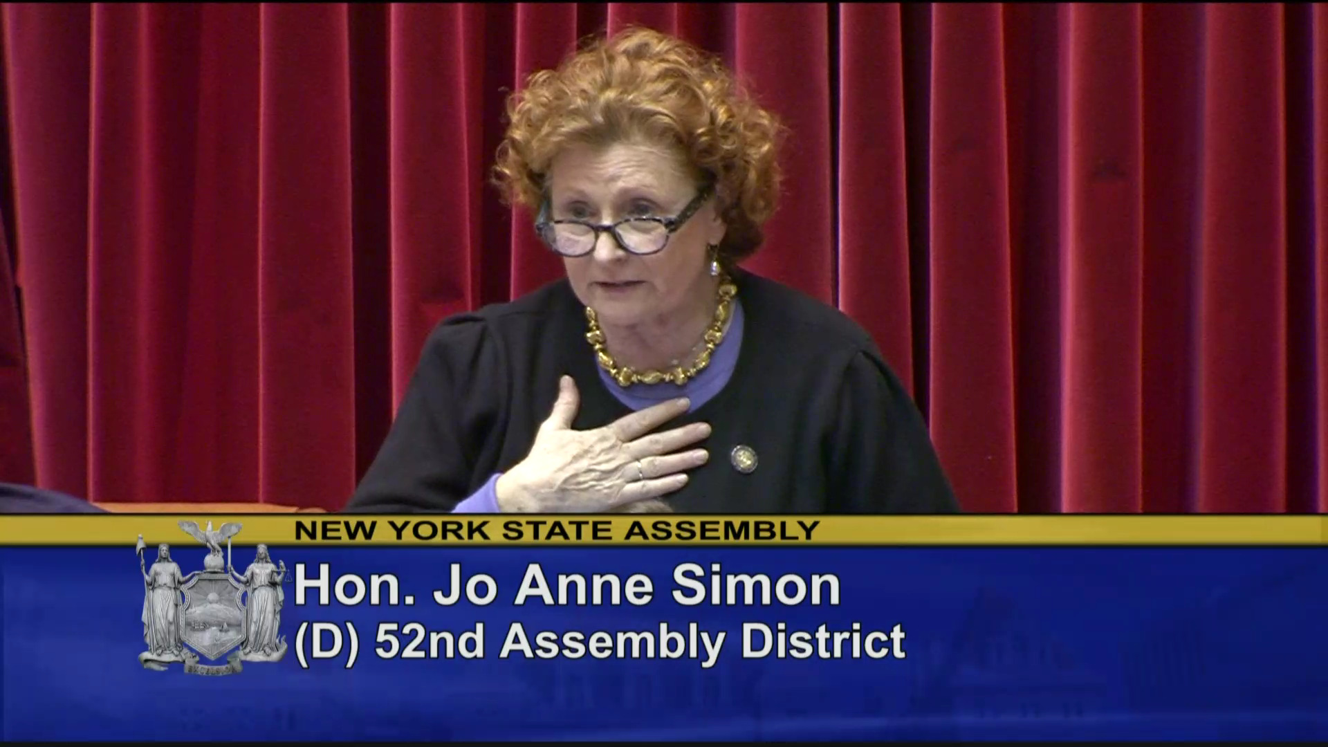 Assemblymember Jo Anne Simon Stands Up for LGBTQ Community