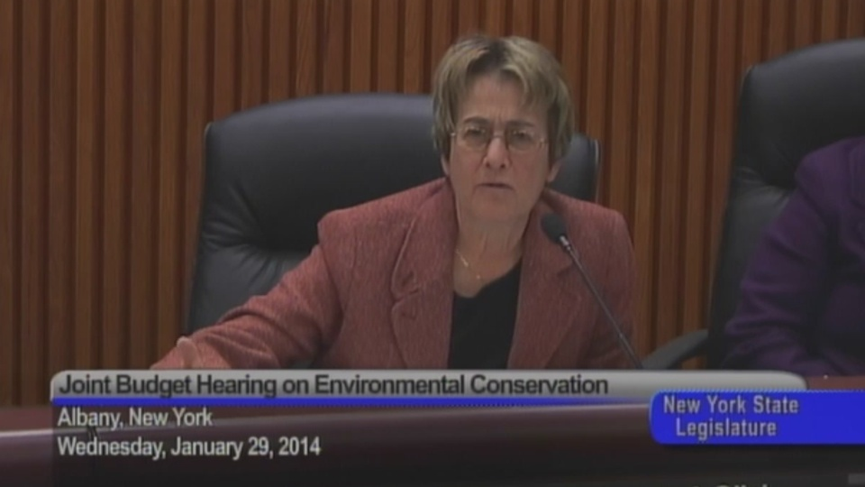 Environmental Conservation Hearing