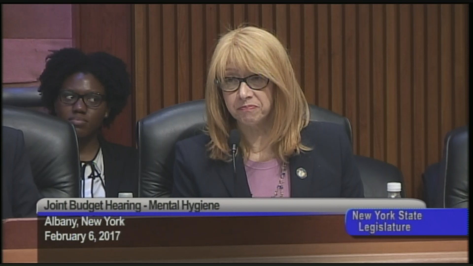 Budget Hearing on Mental Hygiene
