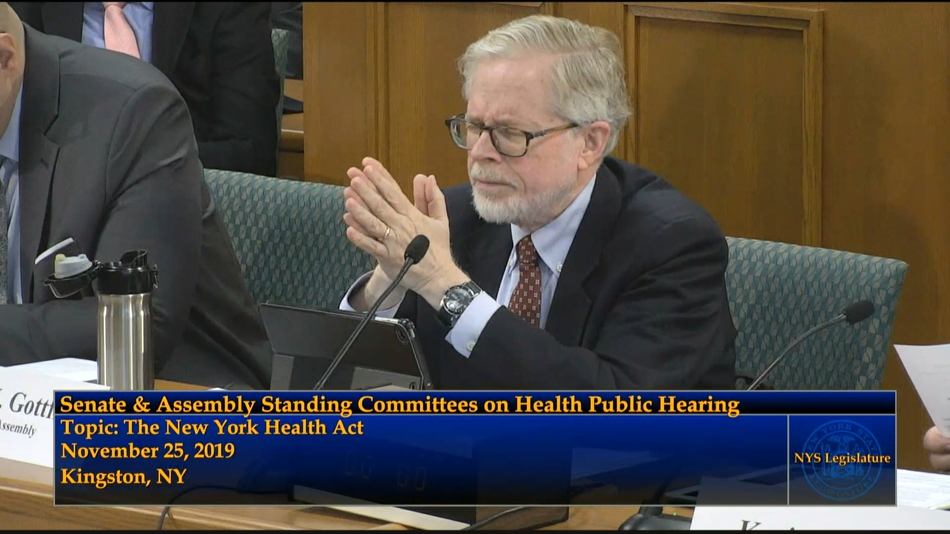 Public Hearing on the New York Health Act (3)
