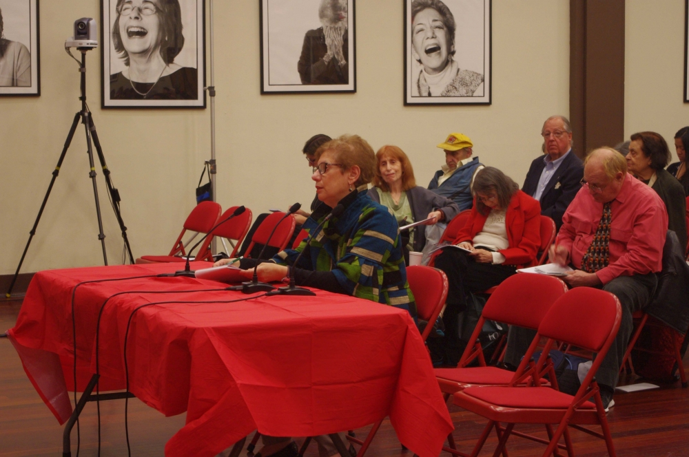 Susan Birenbaum, East 79th Street Association, testifying at the Assembly Member's Senior Consumer Fraud Hearing.