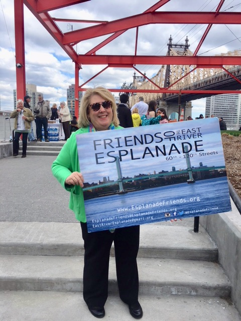 Seawright celebrates with the Friends of the East River Esplanade for the reopening of the Alice Aycock Pavilion.
