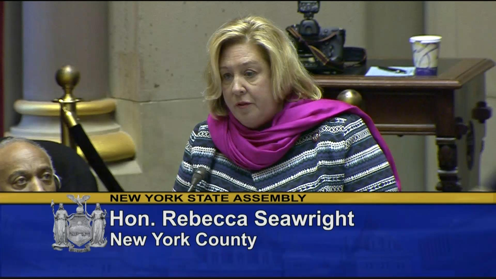 Seawright Works to Ensure Equal Rights for Women in NYS