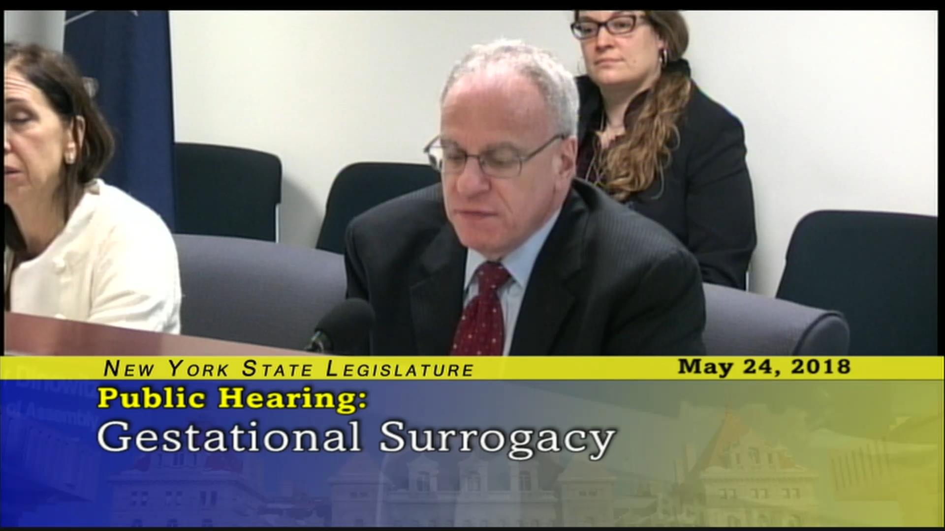 Dinowitz Questioning Costs for Surrogates