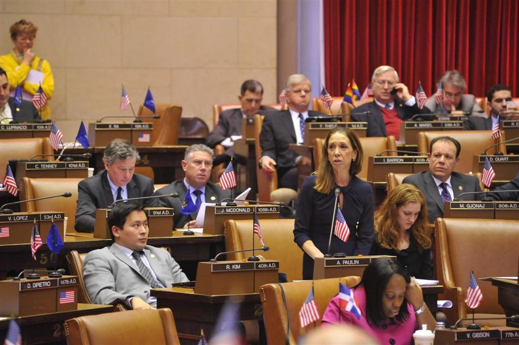 Amy Paulin discussing the SAFE Act on the Assembly floor.