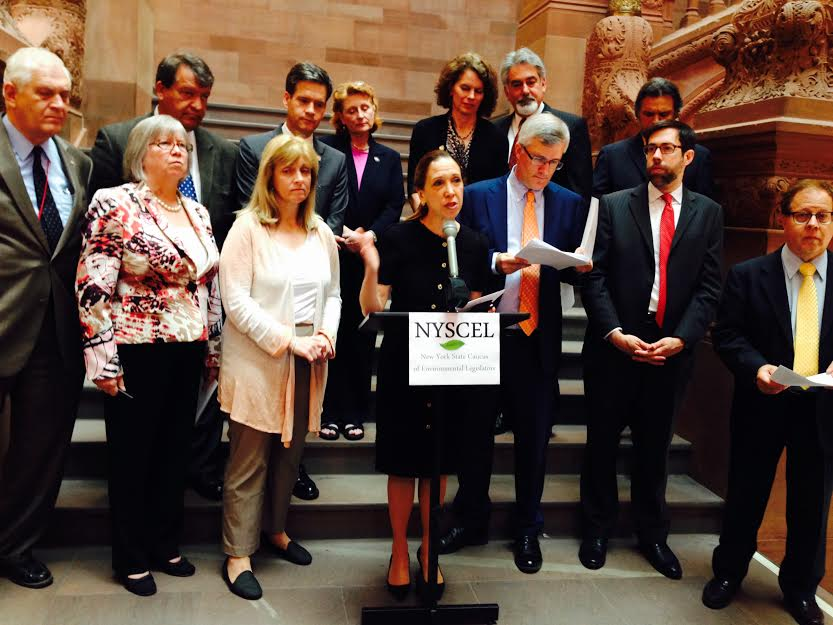 Assemblywoman Amy Paulin speaking at the NYSCEL (New York State Caucus of Environmental Legislators) press conference.
