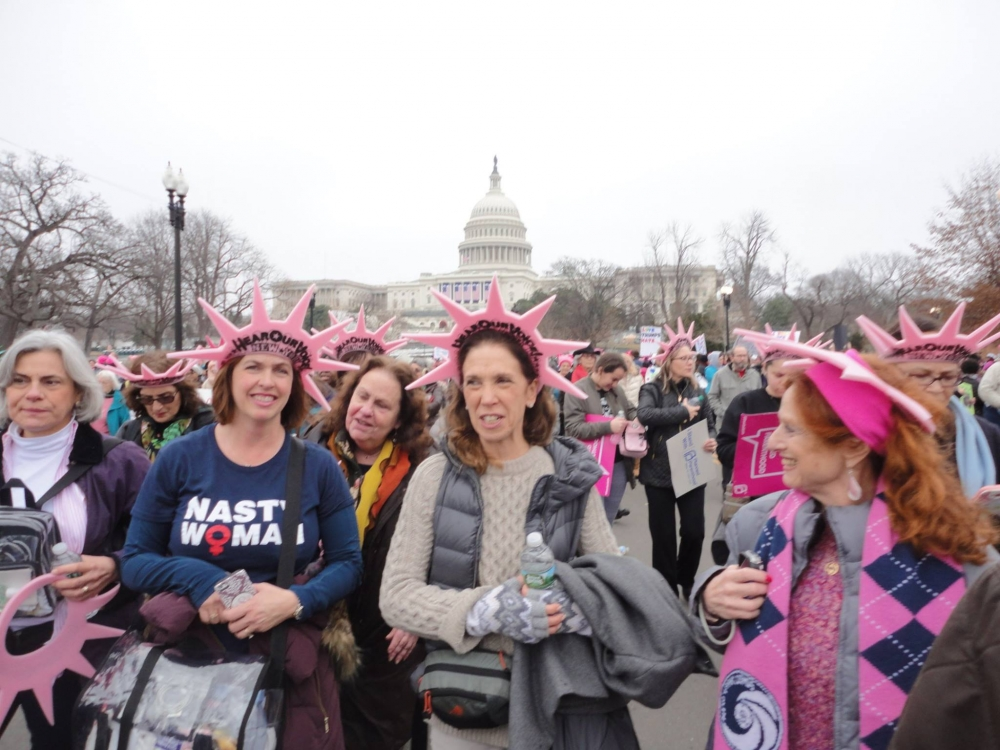 Assemblywoman Amy Paulin led three busloads of constituents during the Women's March on Washington. <br />