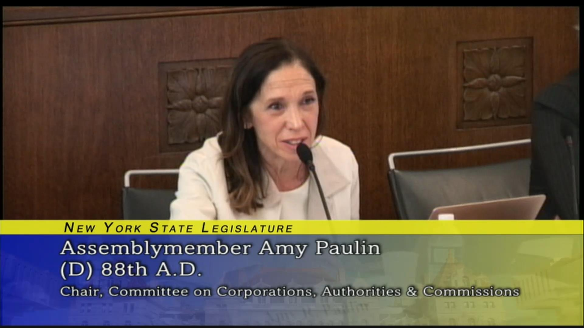 Paulin Questions New Yorkers' Ability to Reach Utilities During Storms