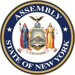 Image result for NY assembly