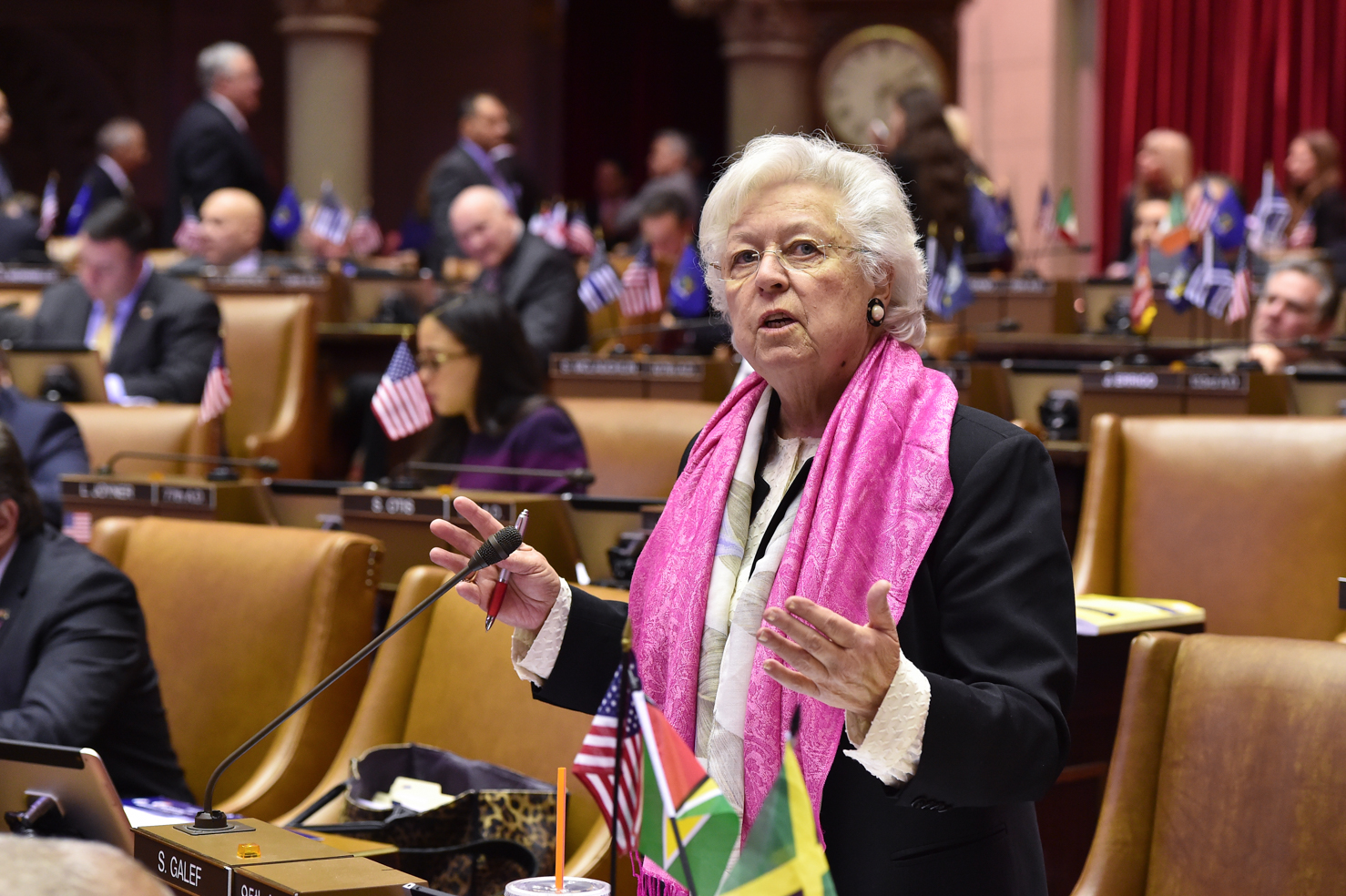 Sandy, pictured here on the New York State Assembly Floor, has passed many bills to benefit the people and municipalities she represents.