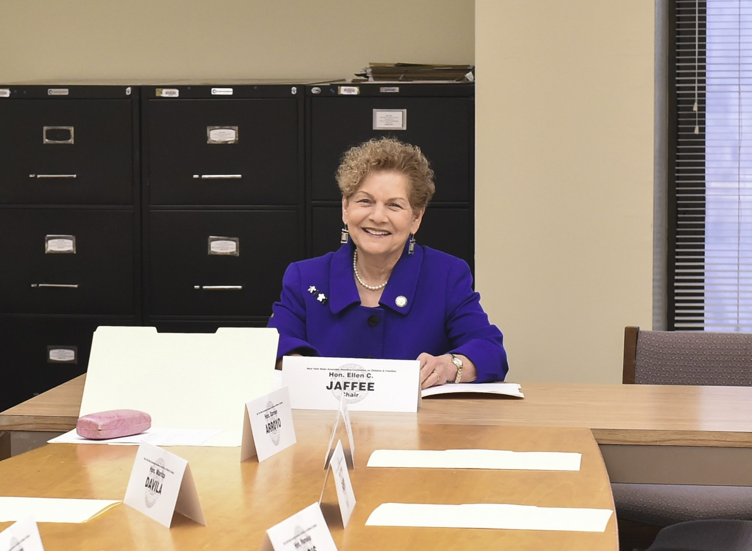 Assemblywoman Jaffee's first children and family committee meeting as Chair
