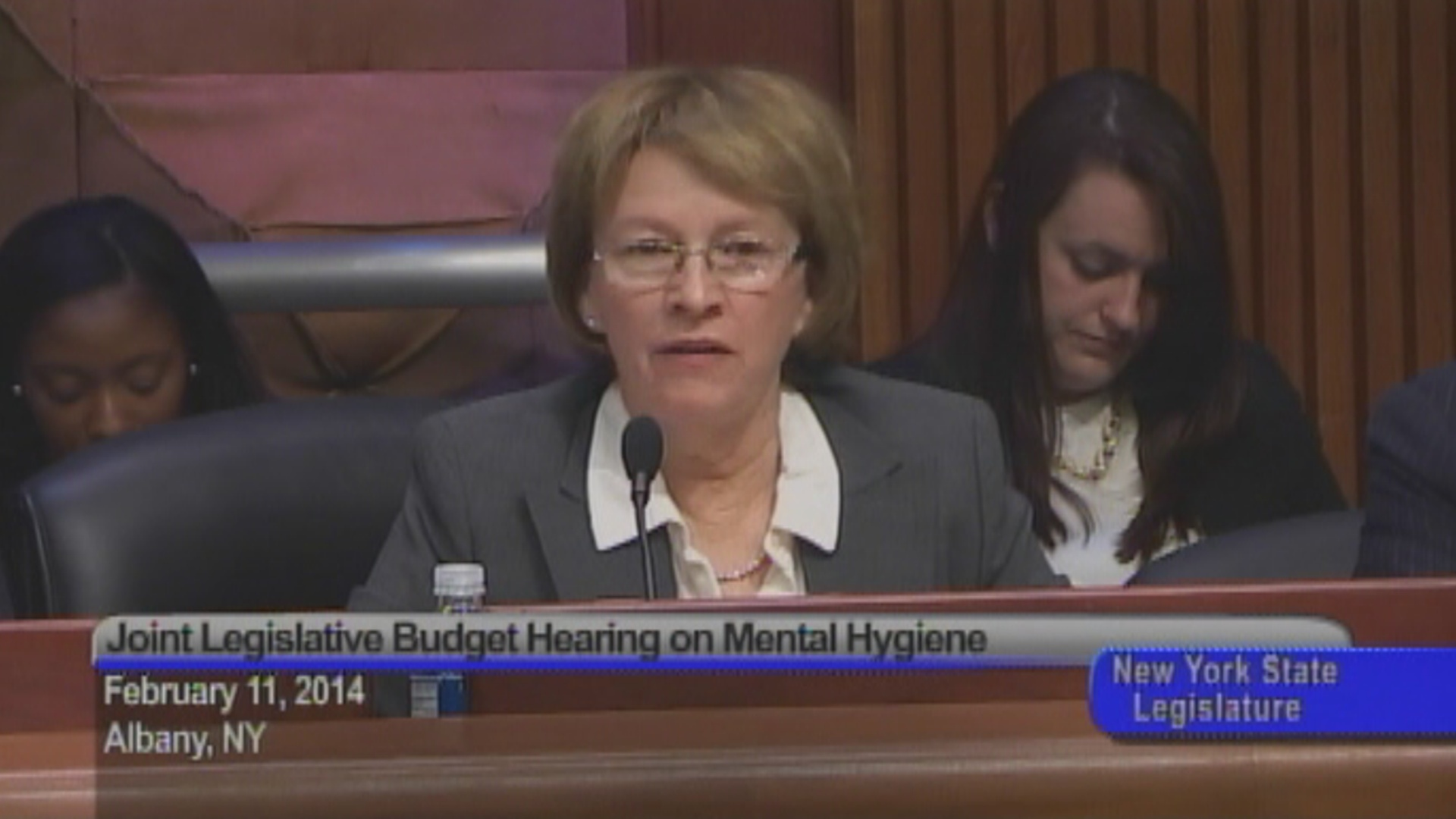 Mental Health Budget Hearing