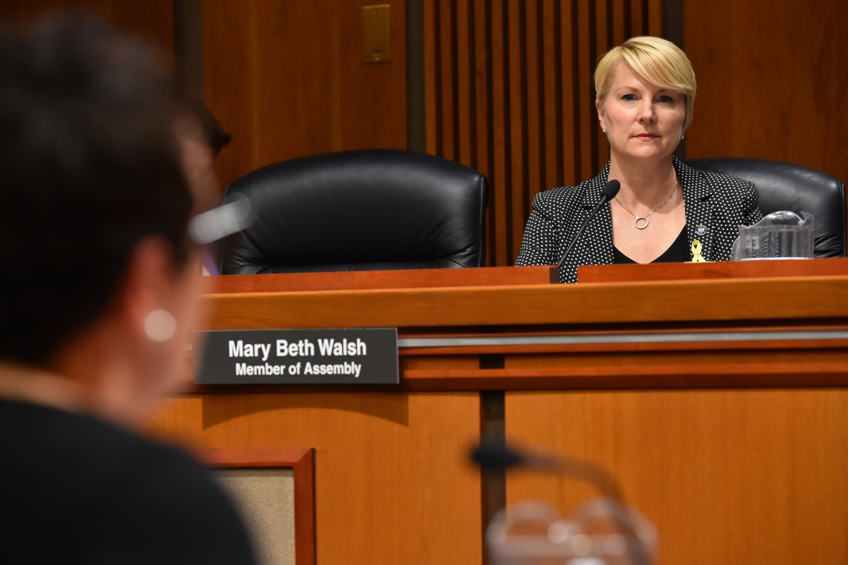 Assemblywoman Mary Beth Walsh (R,C,I,Ref-Ballston) listens in at the joint conference committee today<br />