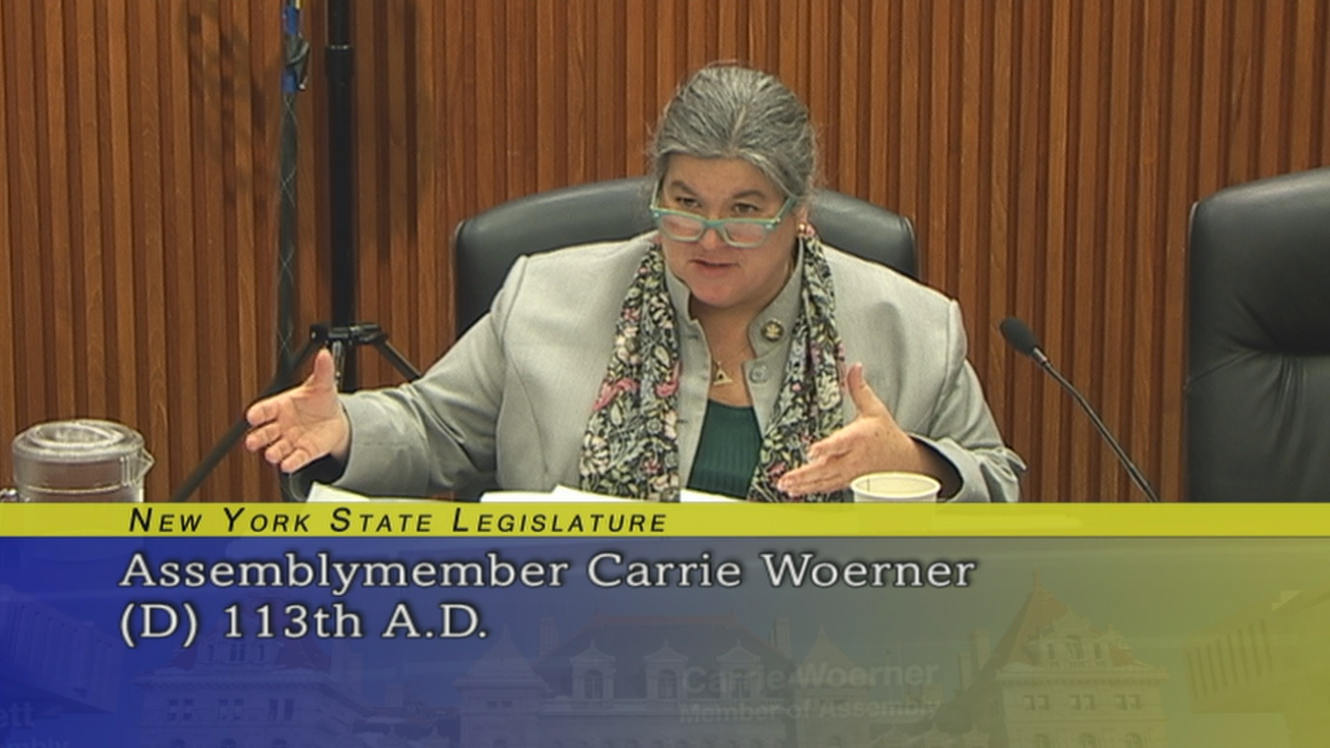 Assemblywoman Woerner Strategic Economic Development