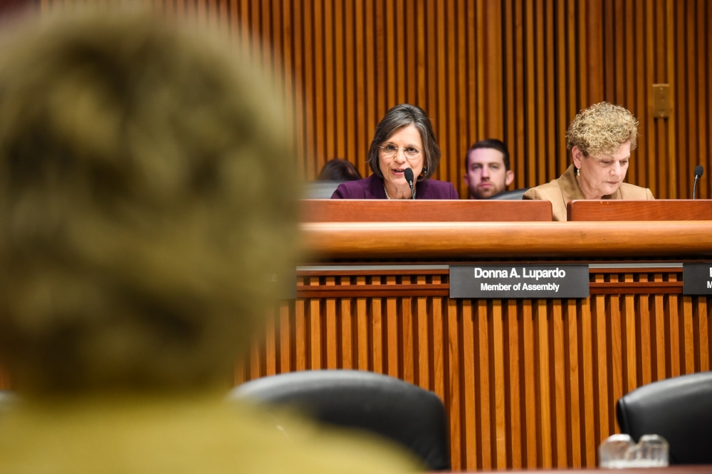 February 9, 2016 – Assemblywoman Lupardo questions OCFS Acting Commissioner during a Human Services budget hearing.