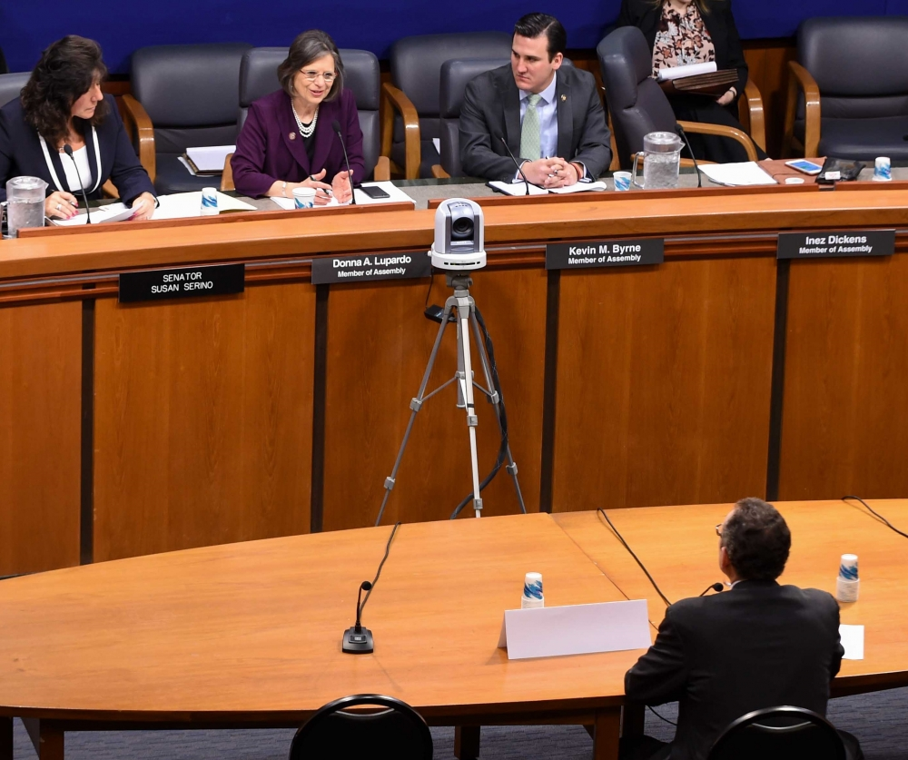 February 28, 2017 – Assemblywoman Lupardo questions a witness at a legislative hearing on elder abuse.<br />