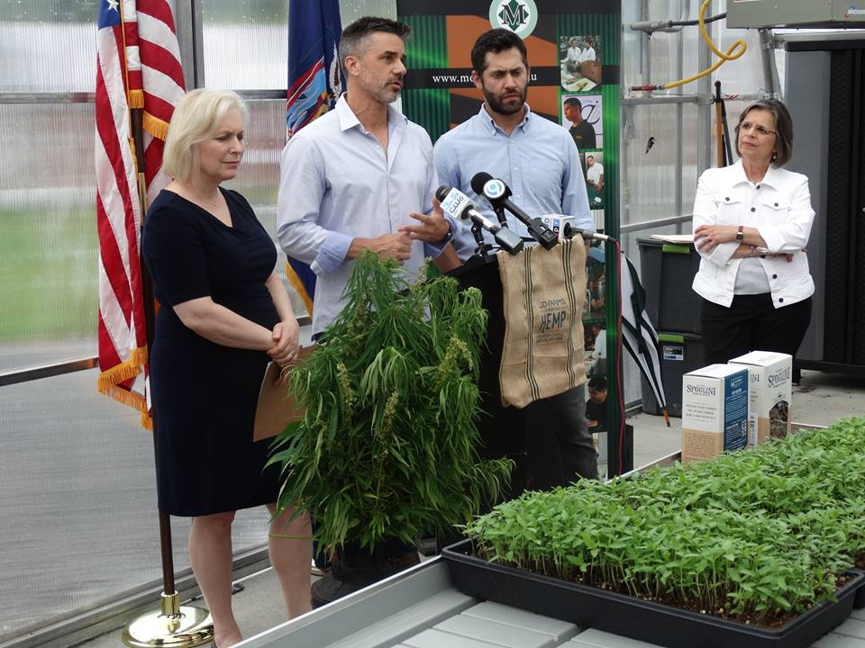 July 24, 2017 – Assemblywoman Lupardo joins U.S. Senator Kirsten Gillibrand at JD Farms, where she announced a letter she is sending to the U.S. Department of Agriculture asking the department to include industrial hemp in its crop insurance program. Senator Gillibrand also announced the reintroduction of the Industrial Hemp Farming Act to remove the federal barriers to growing hemp nationwide.