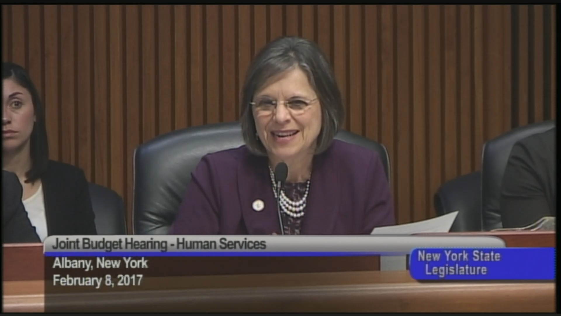 Joint Budget Hearing on Funding for Human Services