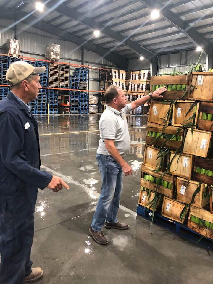 Hawley inspects crates of sweet corn ready for shipment during a visit to Kludt Bros. Farms in Kendall where the third generation producers grow beets, corn, wheat, sweet corn and cabbage and package
