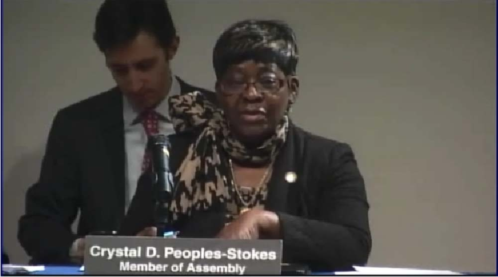 December 10, 2014 – Assemblywoman Crystal Peoples-Stokes speaks at the Public Hearing on the New York Health Bill to Create Single Payer Health Coverage.