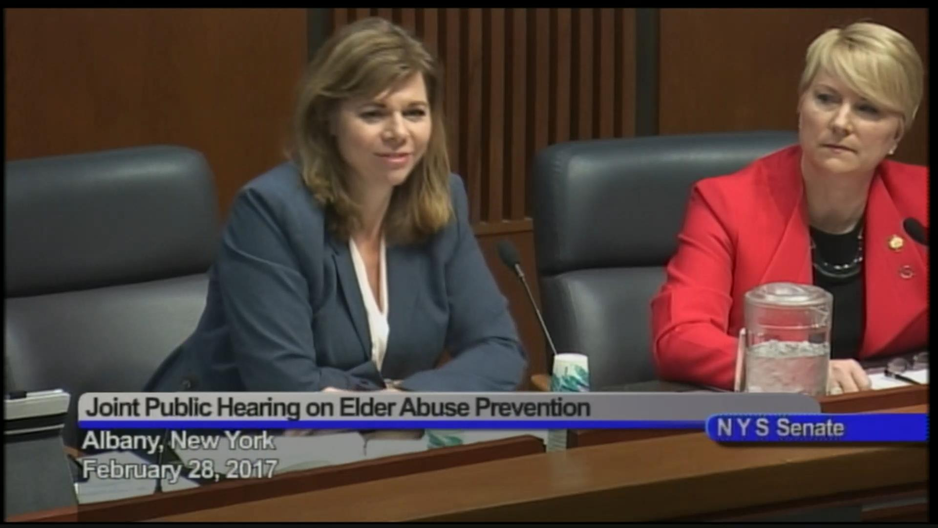 Elder Abuse Public Hearing