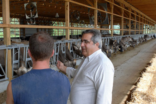 Assemblyman Joe Giglio in the barn at Hill's Dairy Farm in Cattaraugus.