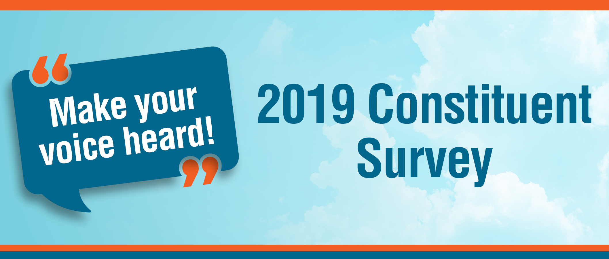 2019 Constituent Survey